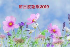 簡約養生節日感謝祭2019