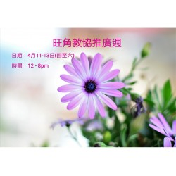 旺角教協推廣週 (四月份)